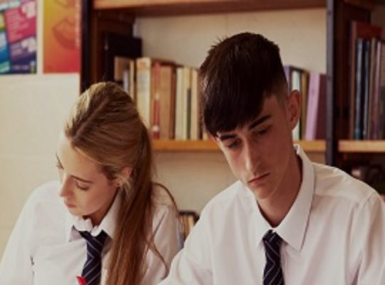 Business – TY Academy